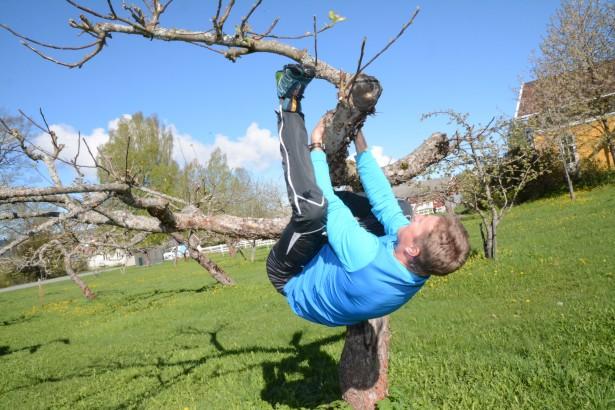 Helsesport, fysisk aktivitet, helsesportpedagoger, Bjørnar Johannessens beste treningstips. Klatre i epletre